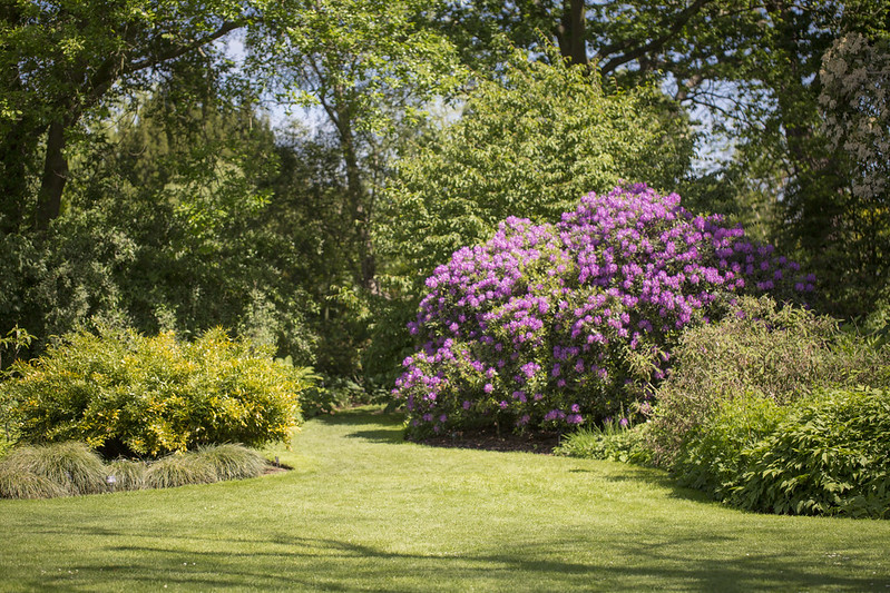 Best Gardens and Arboretums in Kentucky to Explore This Summer | Elizabethtown, KY